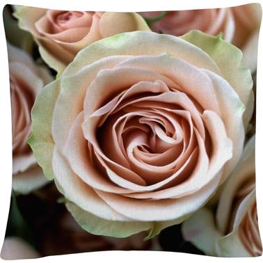 Trademark Fine Art Pale Pink Roses Decorative Throw Pillow