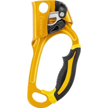Petzl Ascension Ascender Right