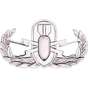 Army Badge, Regular Mirror Finish, Explosive Ordnance Disposal
