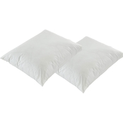 Bargoose Zippered 3 Gauge Vinyl Pillow Cover 2 pk.