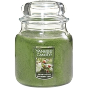 Yankee Candle Snow-Dusted Bayberry Medium Jar Candle