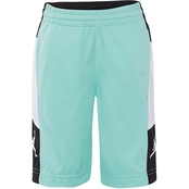 Jordan Boys Rise Elevate Shorts
