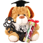 Alder Creek Graduation Dog with Candy Gift Basket