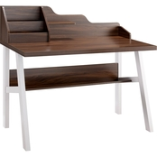 Furniture of America Pomello Contemporary Desk