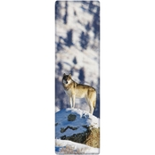 National Geographic Gray Wolf 3-D Bookmark