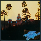 Hotel California, Eagles (Vinyl LP)