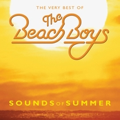 Sounds of Summer, The Beach Boys (Vinyl Double LP)