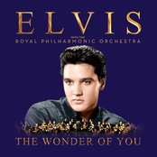 Wonder of You, Elvis Presley (Vinyl LP)