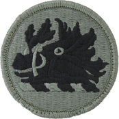 Army Unit Patch Georgia State National Guard