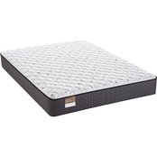 Sealy Golden Elegance Beauvior Firm Mattress