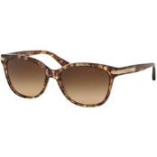 COACH Sunglasses 0HC8132528713