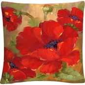 Trademark Fine Art Rio Poppies Decorative Throw Pillow