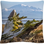 Trademark Fine Art Pierre Leclerc Snowy Owl Decorative Throw Pillow