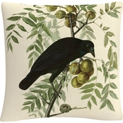 Trademark Fine Art John James Audubon American Crow Decorative Throw Pillow