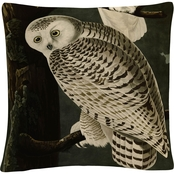 Trademark Fine Art John James Audubon Snowy Owl Decorative Throw Pillow