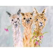GreenBox Art Canvas Sweet Alpacas 18 x 14