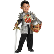 Disguise Ltd. Toddler Boys Knight Of The Dragon Costume