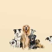 Greenbox Art 14 x 14 Best Friends Puppy Pack Canvas Wall Art