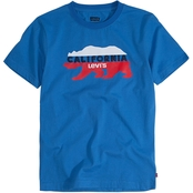 Levi's Boys California Cool Graphic Tee