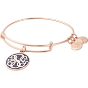 Alex and Ani Color Infused Path of Life Charm Bracelet