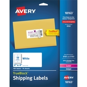 Avery 2 x 4 Shipping Labels with TrueBlock Technology, 100 Pk.