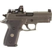 Sig Sauer P229 Legion 9mm 3.9 in. Barrel 10 Rnd Pistol Legion Gray with Romeo1