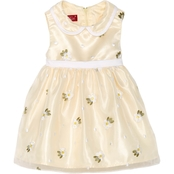 Princess Faith Toddler Girls Flower Embroidered Dress