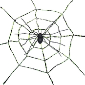 Sunstar Spider Web with Spider