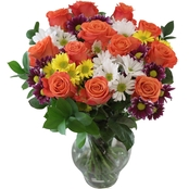 All Occasion Flowers - Orange