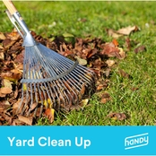 Handy Yard Cleanup (less than 3,000 sq. ft.)