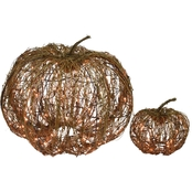 Jet Max Limited Lighted Grapevine Pumpkins (Large) Set of 2