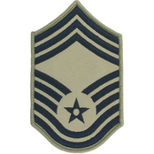 Air Force Rank CMSgt E-9 Subdued Large (ABU)