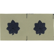 Air Force Lieutenant Colonel Subdued Sew-On Rank (ABU)