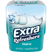 Extra Refreshers Polar Ice Chewing Gum, 40 Pieces