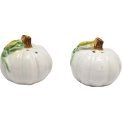 Rustic Harvest Pumpkin Salt and Pepper Shaker