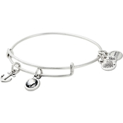 Alex and Ani Strength Charm Bangle