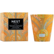 NEST Fragrances Pineapple and Driftwood Classic Candle
