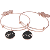 Alex and Ani Charity By Design Big and Little Dipper Set of 2 Bangles