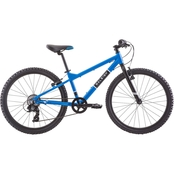 Raleigh Boys Rowdy 24 in. Bike