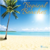 TF Publishing 2020 Tropical Beaches Mini Calendar