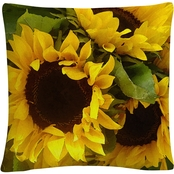 Trademark Fine Art Sunflowers Decorative Throw Pillow
