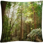 Trademark Fine Art Muir Woods Decorative Throw Pillow