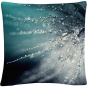 Trademark Fine Art Morning Sonata Decorative Throw Pillow