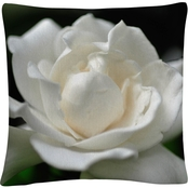 Trademark Fine Art Lovely Gardenia Decorative Throw Pillow