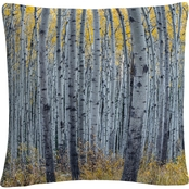 Trademark Fine Art Forest of Aspen Trees Decorative Throw Pillow