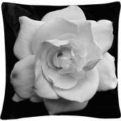 Trademark Fine Art Gardenia in Black and White Decorative Throw Pillow