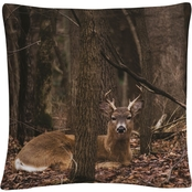 Trademark Fine Art Sitting Deer/Lake Isaac Decorative Throw Pillow