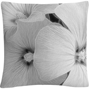 Trademark Fine Art Sheer Malva Decorative Throw Pillow