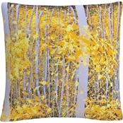 Trademark Fine Art PanorAspens Grey Forest Decorative Throw Pillow