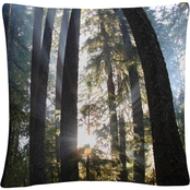 Trademark Fine Art Sunrays Decorative Throw Pillow